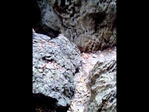 Cave of Bayukbok San Miguel Bulacan