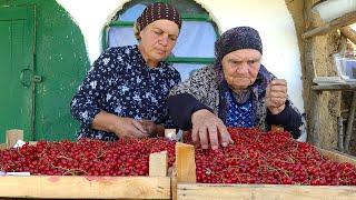 Собрали 15 Килограмм Красной Смородины и Приготовили Желе и Пирог с Бабушкой