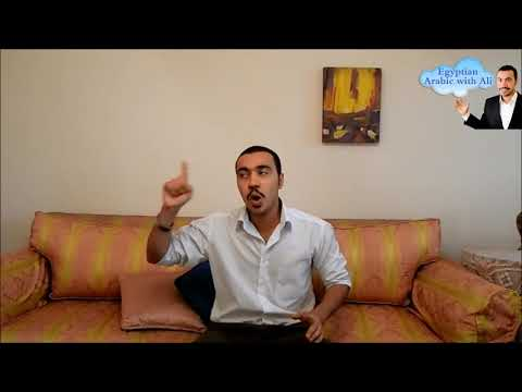 Egyptian Arabic Lesson About Grammar and Sentences with Ali