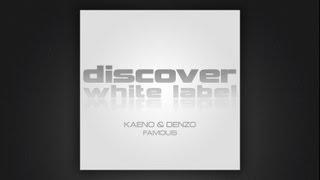 Kaeno and Denzo - Famous (Bryan Kearney Remix)