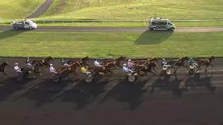 Vidéo de la course PMU PRIX DE RIBEAUVILLE