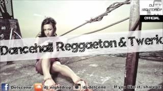 ► 3  | Dancehall Reggaeton / Reggae Moombahton Latin Trap & Twerk Mix 2016 | by DJ Nightdrop