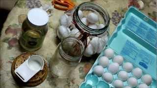 Long Term Egg Storage