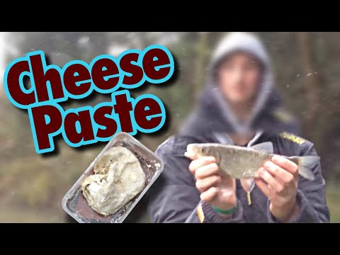 Chub Fishing with Cheese Paste