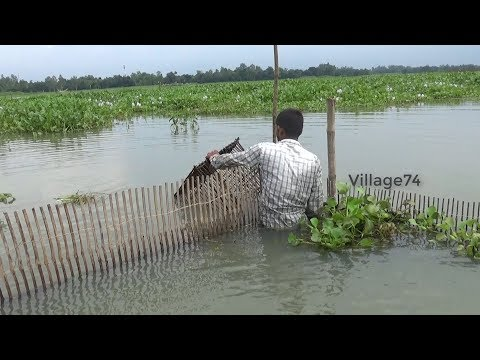 Unique fishing system। New fishing method in the village। fishing videos(part-514)