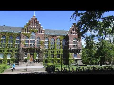 University of Adelaide Beacon Travel Grant