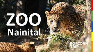 Nainital Travel Guide 1 - Zoo, नैनीताल चिड़ियाघर