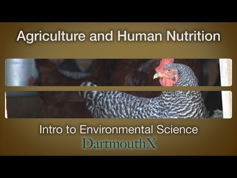 Agriculture and Human Nutrition