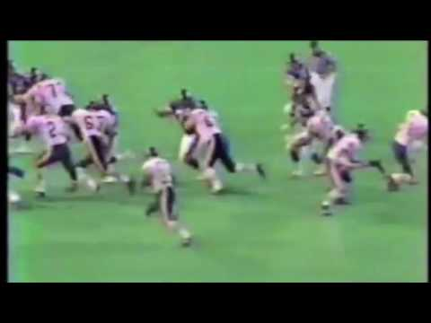 [Highlights] Neal Anderson, RB, Chicago Bears