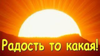 Фото С семьей в Новосибирске 2 я часть 01.20 Веселая Анюта Бровченко.
