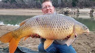 Carp Fishing in Spain - Catching Carp on the Ebro River - Guided Carp Fishing Trip
