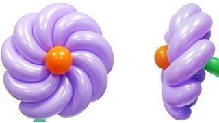 Спиральный цветок из воздушных шаров(Диаметр цветка 26 см. Видео с сайта компании Волшебник (http://sharlar.ru/). Компания Волшебник поставляет воздушные..., 2015-11-17T16:15:32.000Z)
