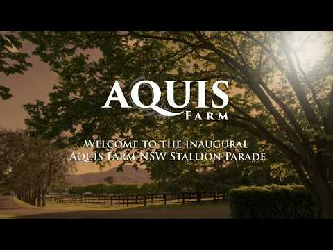 Aquis Farm NSW - 2017 Stallion Parade