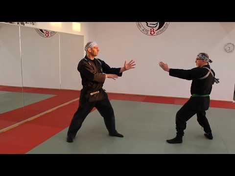 Uke Kata( Block Technik) Ju Jutsu lernen in Bremen #4