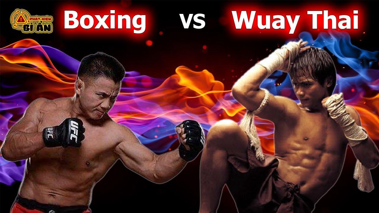 💥 So Sánh Boxing Vs Muay Thái ? Khả Năng Thực Chiến Của Môn Võ Nào Hơn?