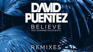 Скачать David Puentez Ft Shawnee Taylor MTS Believe Takedown Remix