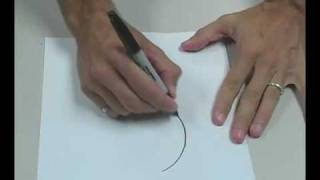 Draw Perfect Freehand Circles!