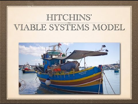 Systems & Systems Engineering - Viable Systems Model