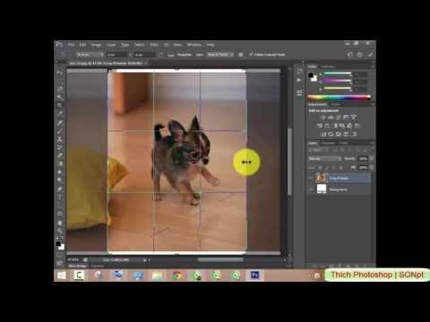 Cắt hình ảnh bằng Crop Tool trong Photoshop CS6 | Cắt hình ảnh đơn giản