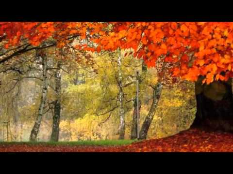 Eva Cassidy ~ Autumn Leaves
