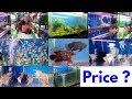 Fish Shop Fish Price Naaz Aquarium Kurla