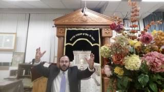 parsha metzorah  what is the big deal about loshan hara why is god so sensitive about it