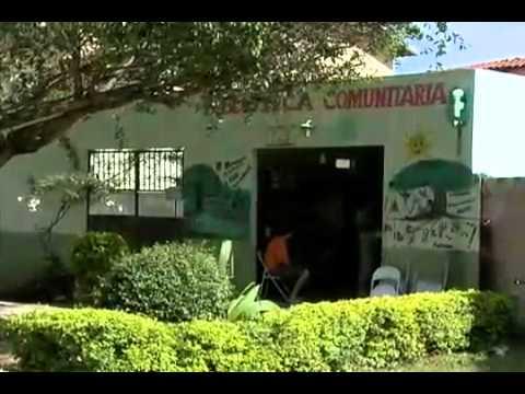 Em São Sebastião, casal transforma garagem de casa em biblioteca