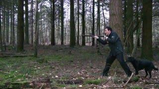 Wieder Hexen in den Wäldern
