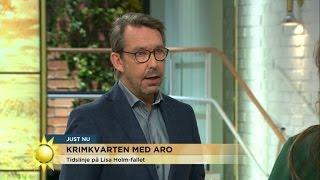 Lisa Holm-tidslinjen - vad har hänt? - Nyhetsmorgon (TV4)