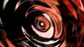 Blacknuss Allstars -- Disco Fantasy/ Picasso Fantasy