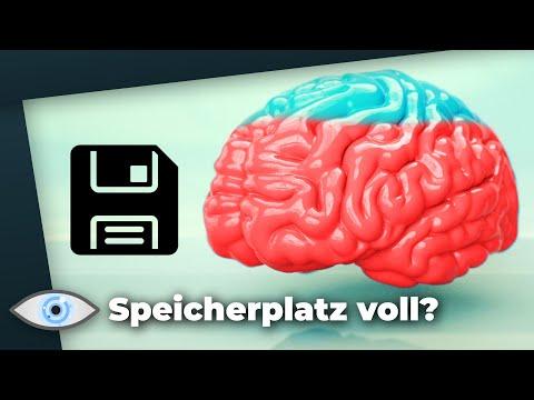 Wie viel Gigabyte passen ins Gehirn? - Feat Breaking Lab