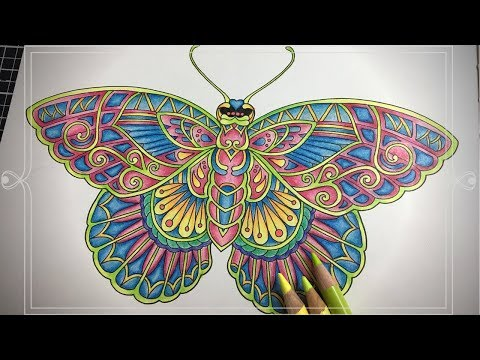 ivy-and-the-inky-butterfly-|-colour-along|-prismacolor-premier