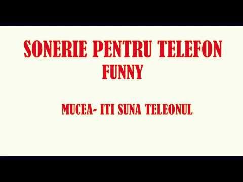 Sonerie amuzanta-Iti suna telfonul/Mucea