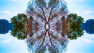 Why is symmetry beautiful?