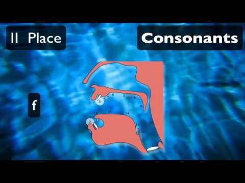 Pronunciation Tutorial 1: English Pronunciation and IPA: Voicing and Place