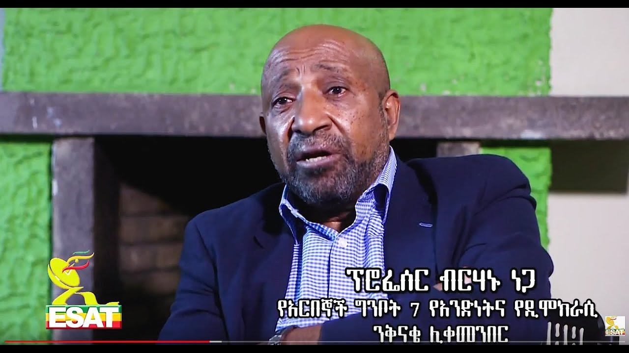 ESAT Interview with Professor Berhanu Nega ( Chairman of AG7