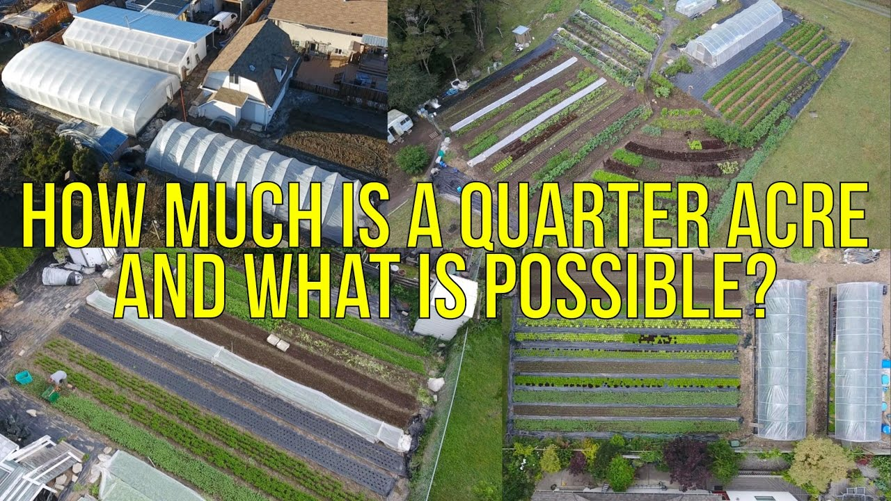How much is a quarter acre and what is possible