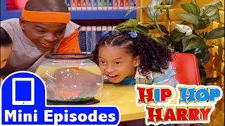 Hip Hop Harry: Underwater Animals thumbnail