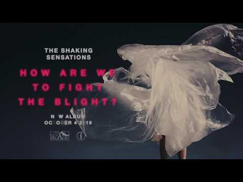 The Shaking Sensations - How Are We to Fight the Blight? (Album Teaser) Mp3