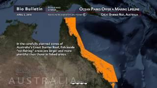 Science Bulletins: Ocean Parks Offer a Marine Lifeline