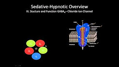 The GABA receptor | How does it work?