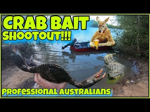 TOP 4 BEST BAITS FOR CATCHING MUD CRABS - PROFESSIONAL AUSTRALIANS