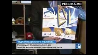 Пчеловод из Молдовы получил две золотые медали на международном конгрессе(Двух золотых медалей удостоился пчеловод из Молдовы на конгрессе всемирной организации производителей..., 2014-07-27T08:07:10.000Z)