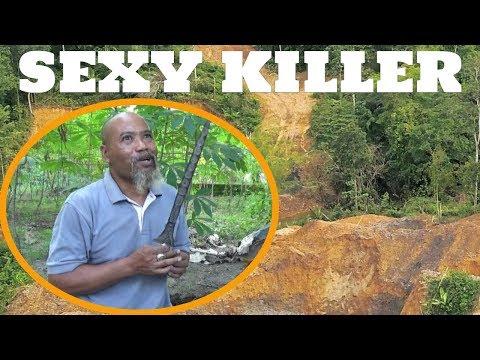 Pak Ndul - Singgung SEXY KILLERs ( sexiest killers )