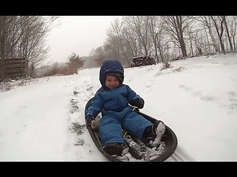 Babies Love Sledding Compilation