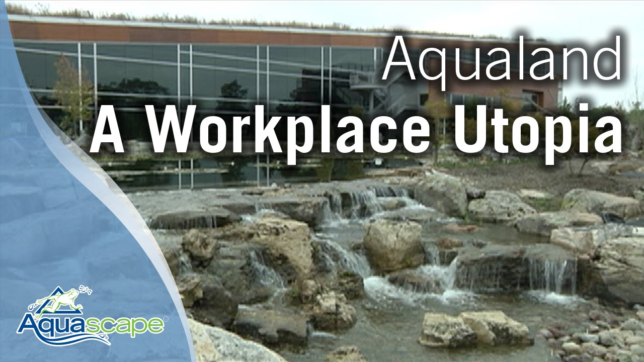 Aquascape Store St Charles | Diy Aquascape