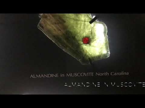 Almandine in Muscovite (Carnegie museum of natural history)