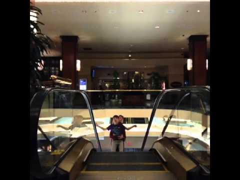 Escalator of Life. #Hotel #toronto...
