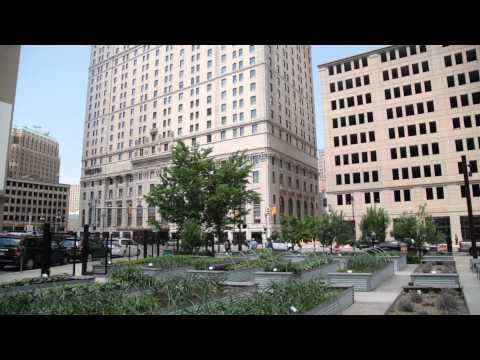 Lafayette Greens - Detroit