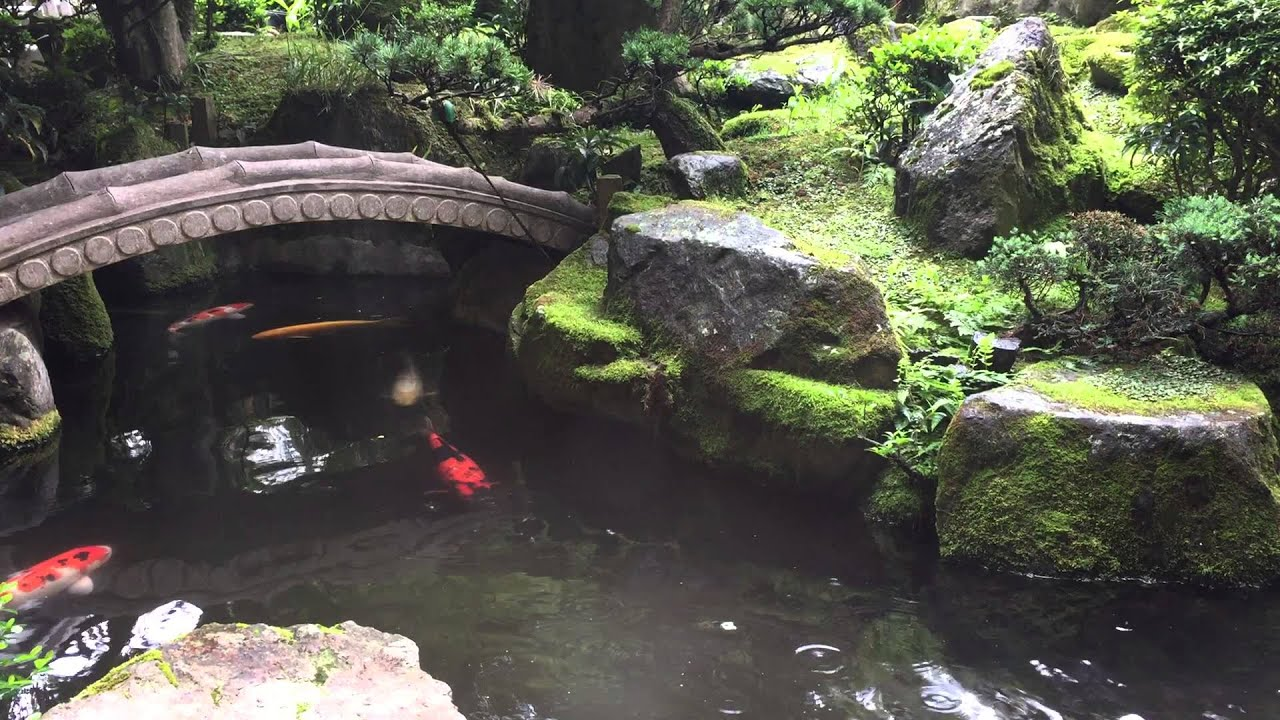 Design Japanese Pond japanese koi pond genkijapan net youtube